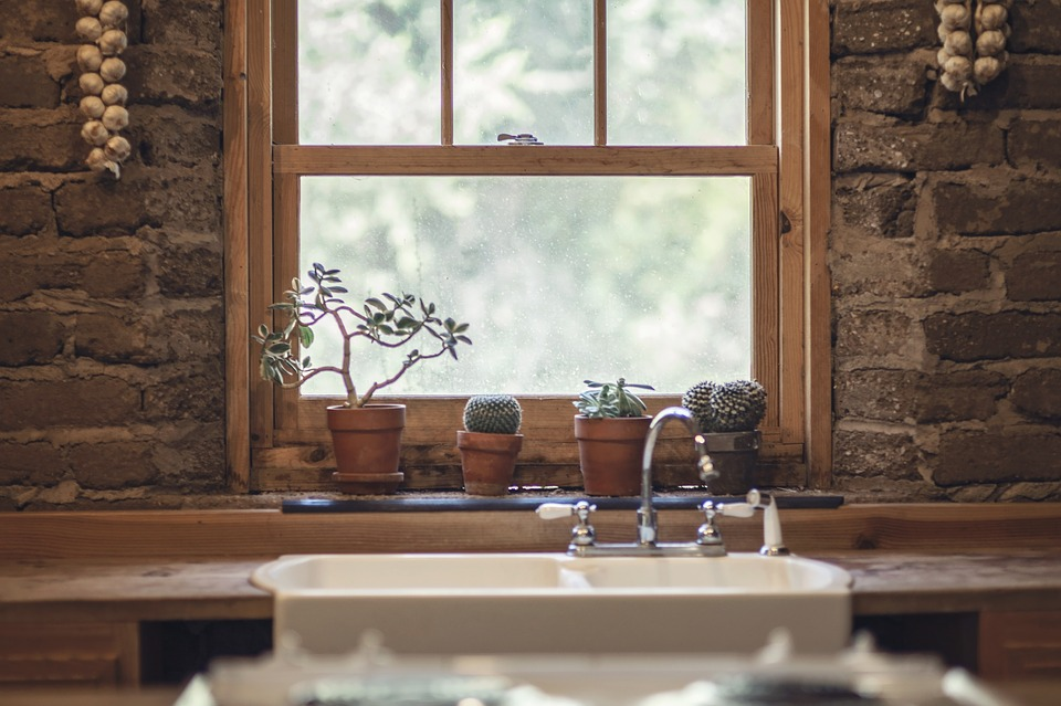 Rustic kitchen window with cactuses
